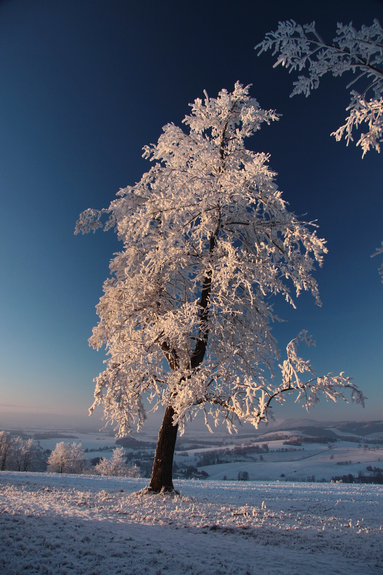 strom-creative-commons-pixabay